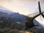 Buzzard swoops into Vinewood