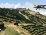 Flying over the vineyards